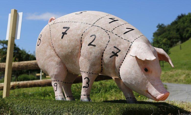 Ein Schwein, von dem man Schweinefleisch gewinnt, dass nicht den Speisegebote der Bibel entspricht