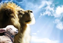A lion and a lamb that show that the messianic prophecies of the old testament of the Bible point to the Messiah Yeshua